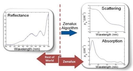 Zenalux Comparison